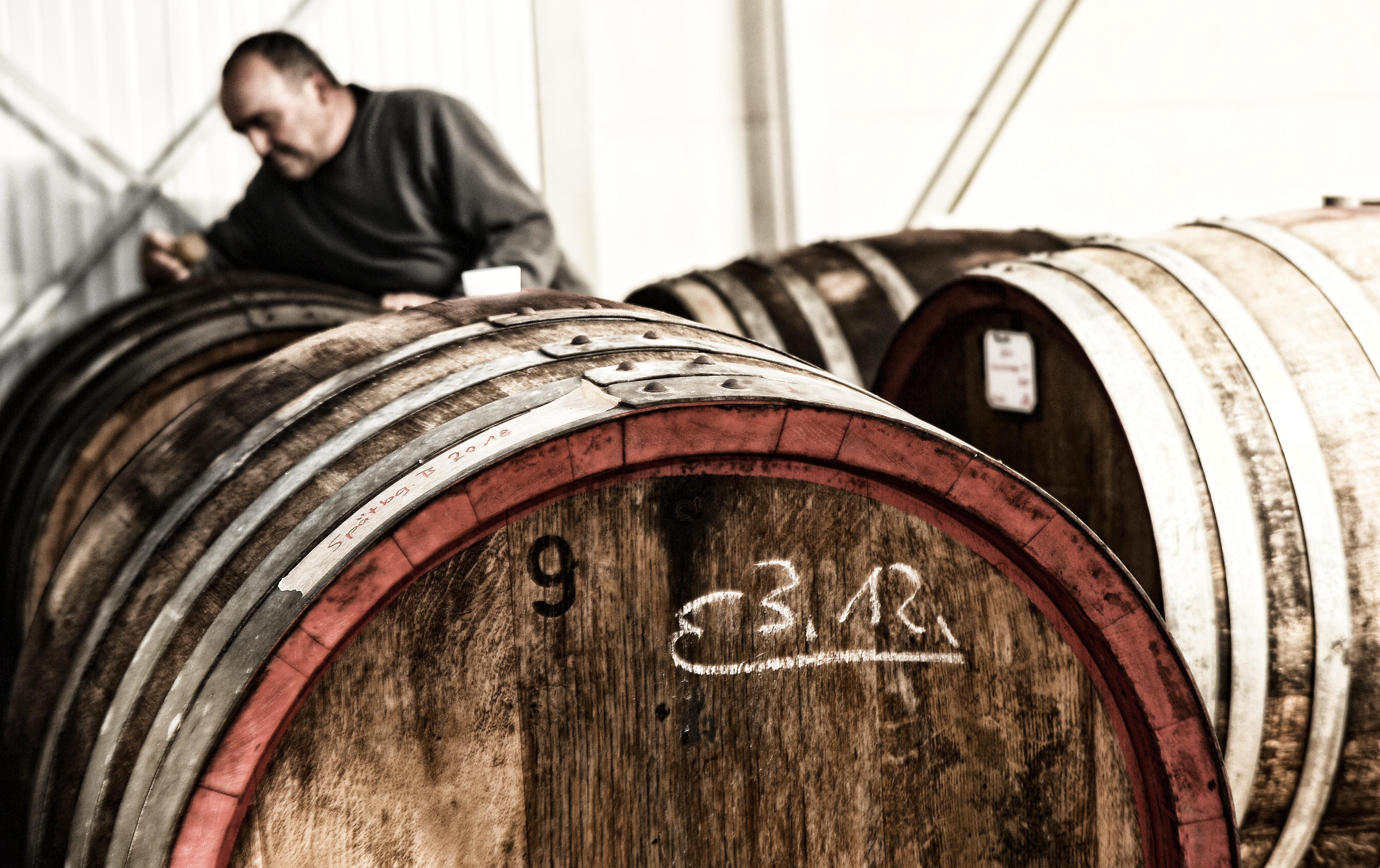 Wein Lesemagazin Weingut Schäfer